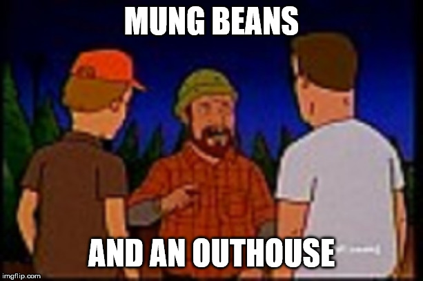 King of the Hill Y2K Mung Beans | MUNG BEANS AND AN OUTHOUSE | image tagged in mung beans,king of the hill,y2k,hillenium,dale gribble | made w/ Imgflip meme maker