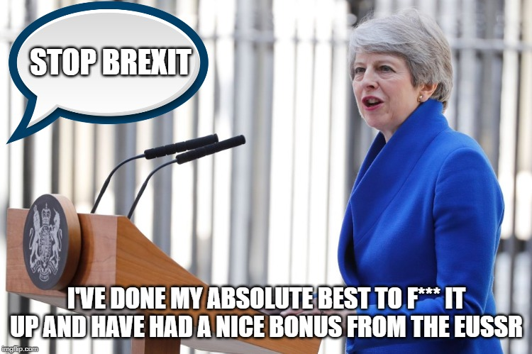 Theresa May | STOP BREXIT I'VE DONE MY ABSOLUTE BEST TO F*** IT UP AND HAVE HAD A NICE BONUS FROM THE EUSSR | image tagged in theresa may | made w/ Imgflip meme maker