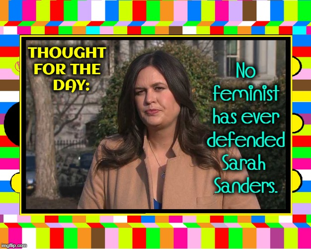 Feminists Don't Like Strong Women who Hold their Ground |  No feminist has ever defended   Sarah    Sanders. THOUGHT FOR THE   DAY: | image tagged in vince vance,feminists,sarah huckabee sanders,white house,press secretary,journalist | made w/ Imgflip meme maker