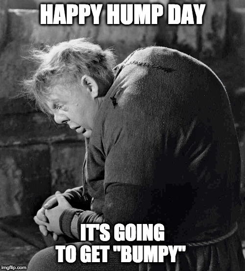 "Hump Day |  HAPPY HUMP DAY; IT'S GOING TO GET ""BUMPY"" 