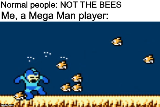 NOT THE BIRDS | Normal people: NOT THE BEES Me, a Mega Man player: | image tagged in birds,megaman,bees | made w/ Imgflip meme maker
