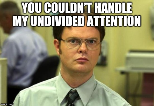 YOU COULDN'T HANDLE MY UNDIVIDED ATTENTION | image tagged in memes,dwight schrute | made w/ Imgflip meme maker