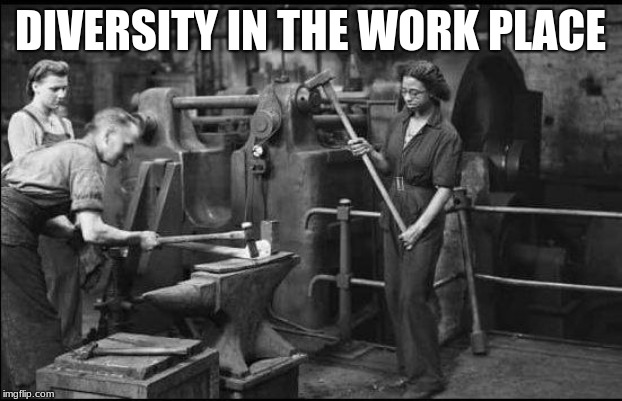 Celebrate Diversity | DIVERSITY IN THE WORK PLACE | image tagged in diversity,diversity in the work place,you wanted equality not earn it,hard work,earn your own money,hammers happen | made w/ Imgflip meme maker