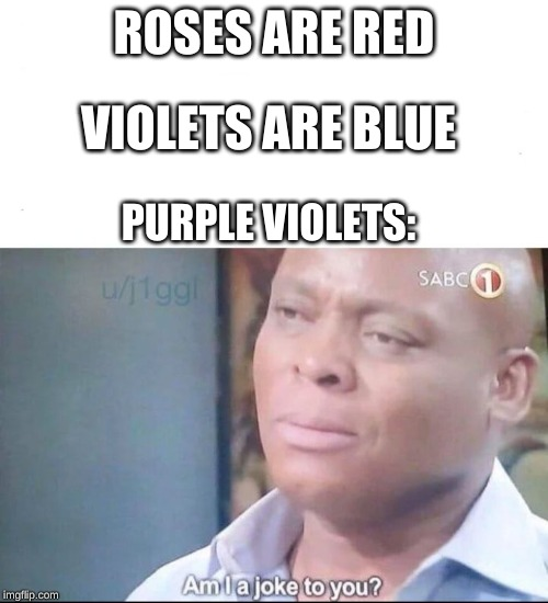 Most violets are not Blue | ROSES ARE RED VIOLETS ARE BLUE PURPLE VIOLETS: | image tagged in am i a joke to you | made w/ Imgflip meme maker