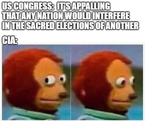 monkey puppet | US CONGRESS:  IT'S APPALLING THAT ANY NATION WOULD INTERFERE IN THE SACRED ELECTIONS OF ANOTHER CIA: | image tagged in monkey puppet,elections,congress | made w/ Imgflip meme maker