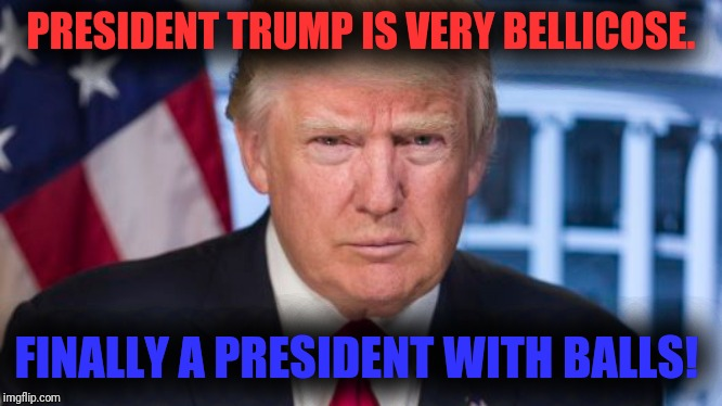 Trump | PRESIDENT TRUMP IS VERY BELLICOSE. FINALLY A PRESIDENT WITH BALLS! | image tagged in president trump | made w/ Imgflip meme maker