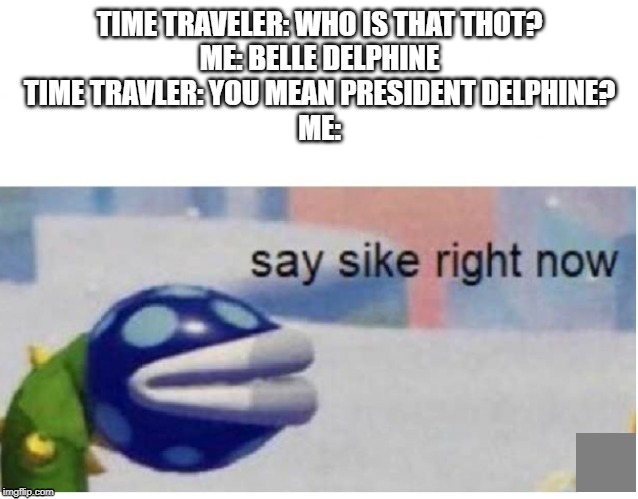 say sike right now | TIME TRAVELER: WHO IS THAT THOT? ME: BELLE DELPHINE TIME TRAVLER: YOU MEAN PRESIDENT DELPHINE? ME: | image tagged in say sike right now | made w/ Imgflip meme maker