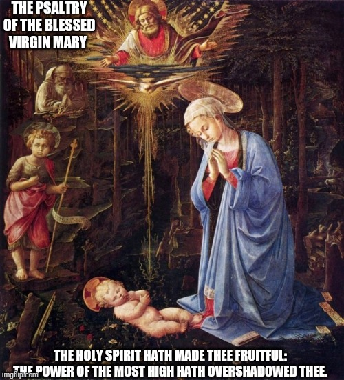 Family | THE PSALTRY OF THE BLESSED VIRGIN MARY THE HOLY SPIRIT HATH MADE THEE FRUITFUL: THE POWER OF THE MOST HIGH HATH OVERSHADOWED THEE. | image tagged in catholic,christian,holy spirit,holy bible,family,the most interesting man in the world | made w/ Imgflip meme maker