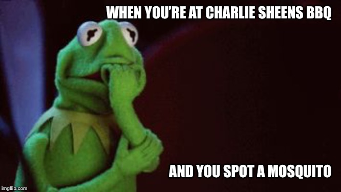 Nervous Kermit | WHEN YOU'RE AT CHARLIE SHEENS BBQ AND YOU SPOT A MOSQUITO | image tagged in nervous kermit,charlie sheen,bbq,mosquitoes,funny,scared | made w/ Imgflip meme maker