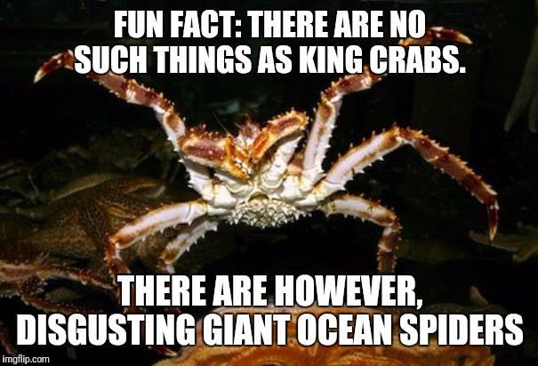 Seafood truth. | FUN FACT: THERE ARE NO SUCH THINGS AS KING CRABS. THERE ARE HOWEVER, DISGUSTING GIANT OCEAN SPIDERS | image tagged in crabs,disgusting,giant,ocean,spiders | made w/ Imgflip meme maker