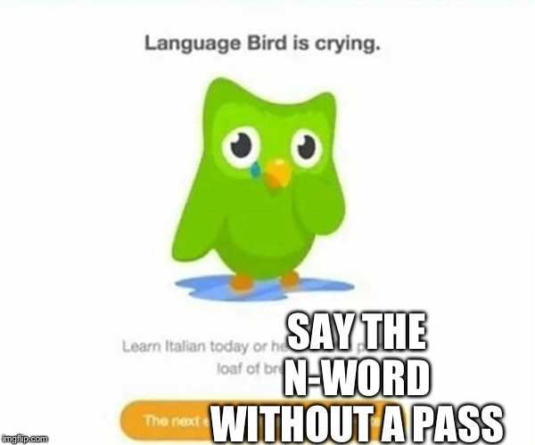 Duolingo bird | SAY THE N-WORD WITHOUT A PASS | image tagged in duolingo bird | made w/ Imgflip meme maker