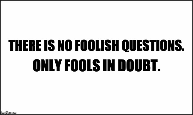 plain white | THERE IS NO FOOLISH QUESTIONS. ONLY FOOLS IN DOUBT. | image tagged in plain white | made w/ Imgflip meme maker