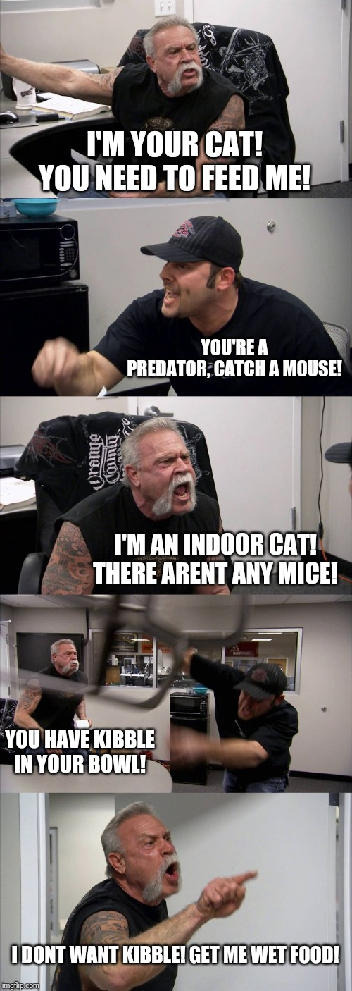American Chopper Argument |  I'M YOUR CAT! YOU NEED TO FEED ME! YOU'RE A PREDATOR, CATCH A MOUSE! I'M AN INDOOR CAT! THERE ARENT ANY MICE! YOU HAVE KIBBLE IN YOUR BOWL! I DONT WANT KIBBLE! GET ME WET FOOD! | image tagged in memes,american chopper argument | made w/ Imgflip meme maker