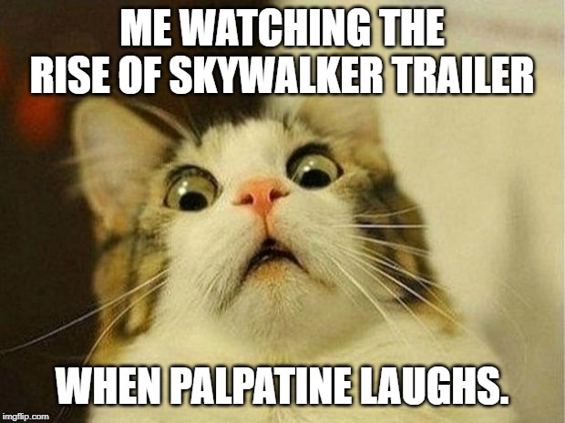TROS Cat | ME WATCHING THE RISE OF SKYWALKER TRAILER WHEN PALPATINE LAUGHS. | image tagged in memes,scared cat,starwars,the rise of skywalker,emperor palpatine,laughs | made w/ Imgflip meme maker