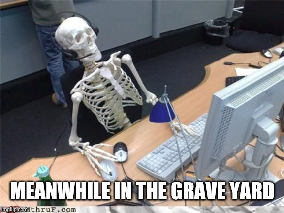 Skeleton Computer | MEANWHILE IN THE GRAVE YARD | image tagged in skeleton computer | made w/ Imgflip meme maker