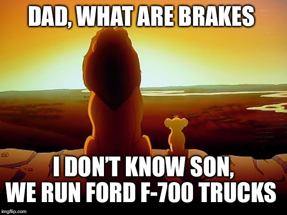 Lion King | DAD, WHAT ARE BRAKES I DON'T KNOW SON, WE RUN FORD F-700 TRUCKS | image tagged in memes,lion king | made w/ Imgflip meme maker