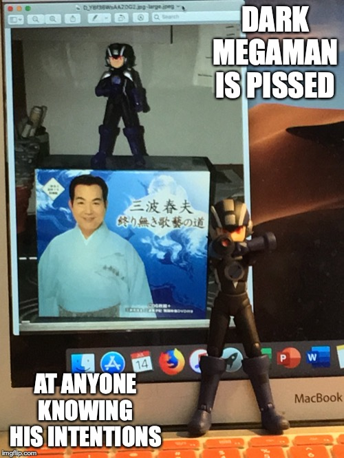 Dark Megaman Pissed at Me | DARK MEGAMAN IS PISSED AT ANYONE KNOWING HIS INTENTIONS | image tagged in megaman,megaman nt warrior,memes,enka,haruo minami | made w/ Imgflip meme maker