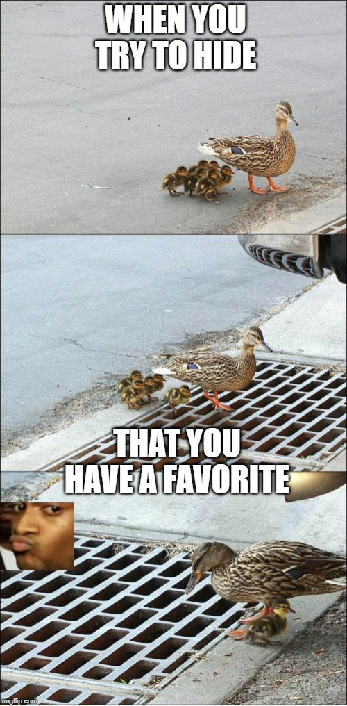 Favoritism | WHEN YOU TRY TO HIDE THAT YOU HAVE A FAVORITE | image tagged in baby duck in sewer,skeptical,duck face,favorites | made w/ Imgflip meme maker