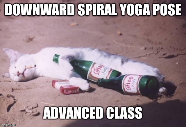 Downward spiral yoga cat | DOWNWARD SPIRAL YOGA POSE ADVANCED CLASS | image tagged in downward spiral yoga cat | made w/ Imgflip meme maker