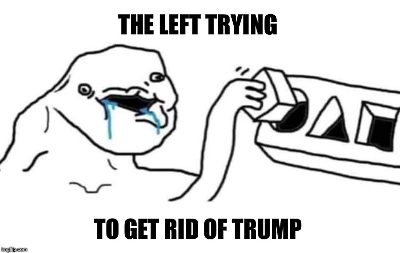 It's getting funnier and funnier to watch folks! | THE LEFT TRYING TO GET RID OF TRUMP | image tagged in maga | made w/ Imgflip meme maker