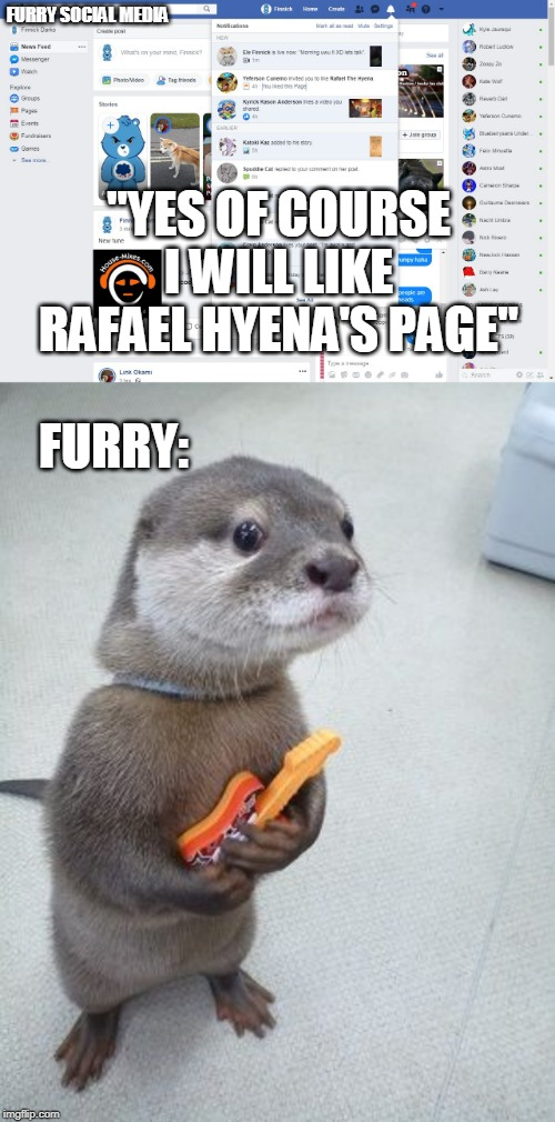 "furry | FURRY SOCIAL MEDIA ""YES OF COURSE I WILL LIKE RAFAEL HYENA'S PAGE"" FURRY: 