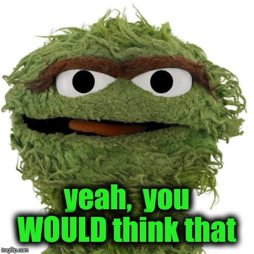 Oscar The Grouch | yeah,  you WOULD think that | image tagged in oscar the grouch | made w/ Imgflip meme maker