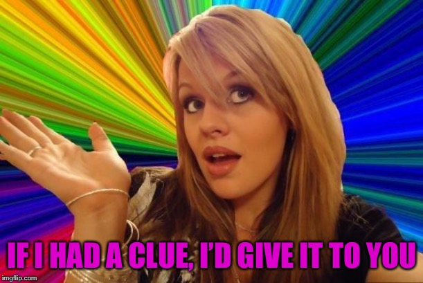 Dumb Blonde | IF I HAD A CLUE, I'D GIVE IT TO YOU | image tagged in memes,dumb blonde | made w/ Imgflip meme maker