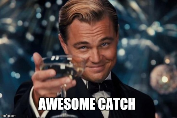 Leonardo Dicaprio Cheers Meme | AWESOME CATCH | image tagged in memes,leonardo dicaprio cheers | made w/ Imgflip meme maker