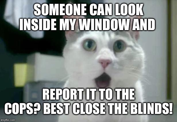 OMG Cat | SOMEONE CAN LOOK INSIDE MY WINDOW AND REPORT IT TO THE COPS? BEST CLOSE THE BLINDS! | image tagged in memes,omg cat | made w/ Imgflip meme maker