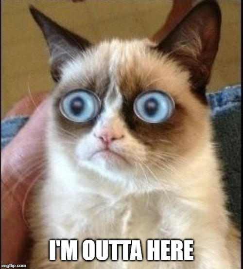 Grumpy Cat Shocked | I'M OUTTA HERE | image tagged in grumpy cat shocked | made w/ Imgflip meme maker