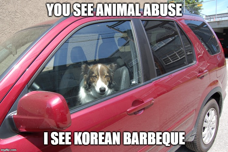 mmmmmm tasty |  YOU SEE ANIMAL ABUSE; I SEE KOREAN BARBEQUE | image tagged in korean,barbecue,yummy,jk | made w/ Imgflip meme maker