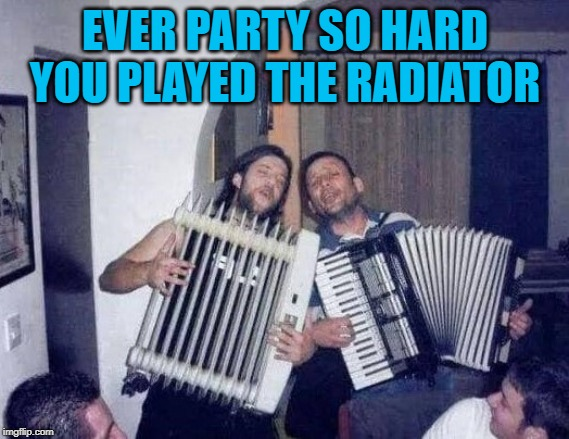 Now that's a good time... | EVER PARTY SO HARD YOU PLAYED THE RADIATOR | image tagged in drunk af,memes,drunk,funny,having a good time | made w/ Imgflip meme maker