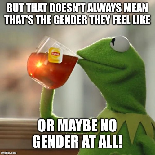 BUT THAT DOESN'T ALWAYS MEAN THAT'S THE GENDER THEY FEEL LIKE OR MAYBE NO GENDER AT ALL! | image tagged in memes,but thats none of my business,kermit the frog | made w/ Imgflip meme maker