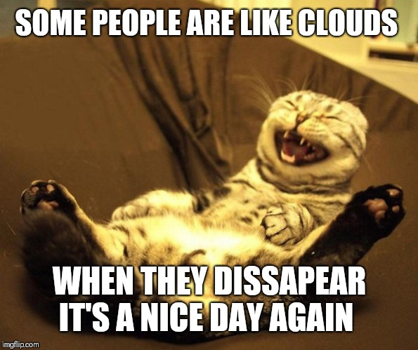 laughing cat | SOME PEOPLE ARE LIKE CLOUDS WHEN THEY DISSAPEAR IT'S A NICE DAY AGAIN | image tagged in laughing cat,not a people person | made w/ Imgflip meme maker
