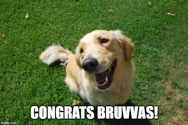 Happy Dog | CONGRATS BRUVVAS! | image tagged in happy dog | made w/ Imgflip meme maker