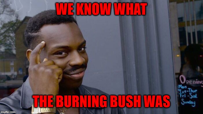 Roll Safe Think About It Meme | WE KNOW WHAT THE BURNING BUSH WAS | image tagged in memes,roll safe think about it | made w/ Imgflip meme maker