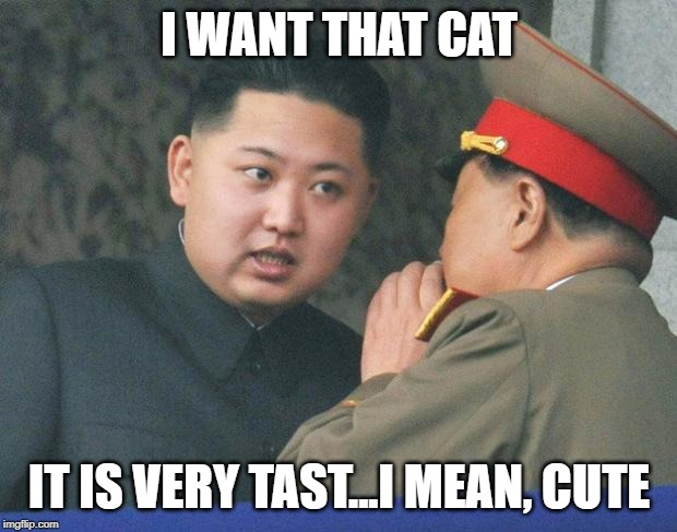 Hungry Kim Jong Un | I WANT THAT CAT IT IS VERY TAST...I MEAN, CUTE | image tagged in hungry kim jong un | made w/ Imgflip meme maker