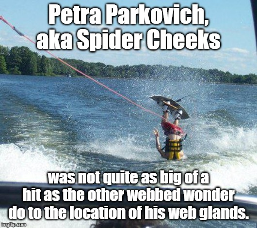 Nailed It Meme | Petra Parkovich, aka Spider Cheeks was not quite as big of a hit as the other webbed wonder do to the location of his web glands. | image tagged in memes,nailed it | made w/ Imgflip meme maker