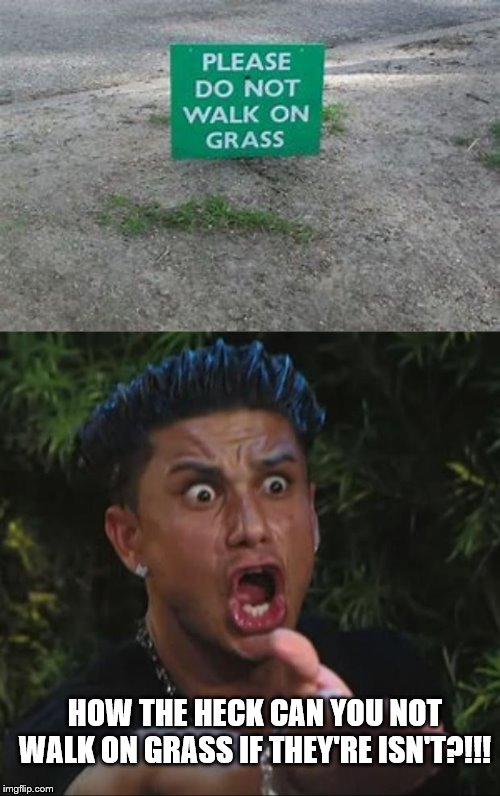 whoever put that sign their was real dumb? | HOW THE HECK CAN YOU NOT WALK ON GRASS IF THEY'RE ISN'T?!!! | image tagged in dj pauly d,okay guy rage face2,wtf girl,so i guess you can say things are getting pretty serious,why so serious | made w/ Imgflip meme maker