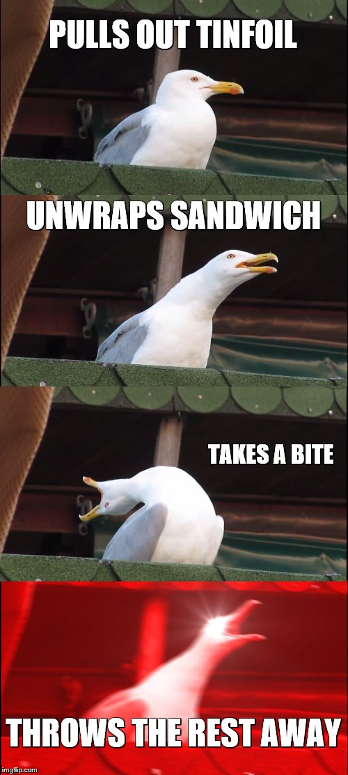 Inhaling Seagull Meme |  PULLS OUT TINFOIL; UNWRAPS SANDWICH; TAKES A BITE; THROWS THE REST AWAY | image tagged in memes,inhaling seagull | made w/ Imgflip meme maker