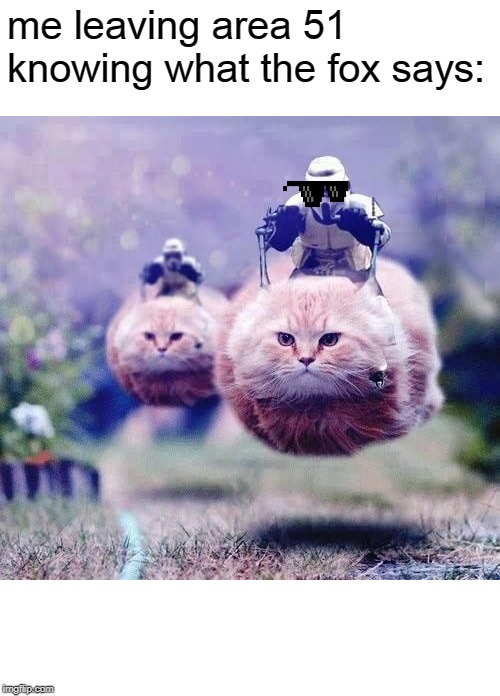 Hovercats | me leaving area 51 knowing what the fox says: | image tagged in hovercats | made w/ Imgflip meme maker