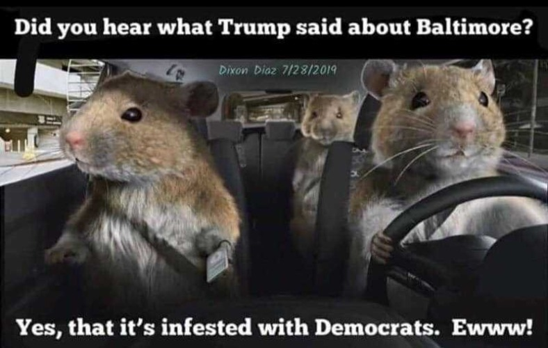 Did you hear what Trump said about Baltimore? | image tagged in democrats,demorats,baltimore,rats,race baiters,race card | made w/ Imgflip meme maker