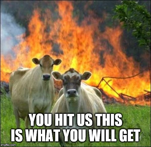 Evil Cows Meme | YOU HIT US THIS IS WHAT YOU WILL GET | image tagged in memes,evil cows | made w/ Imgflip meme maker