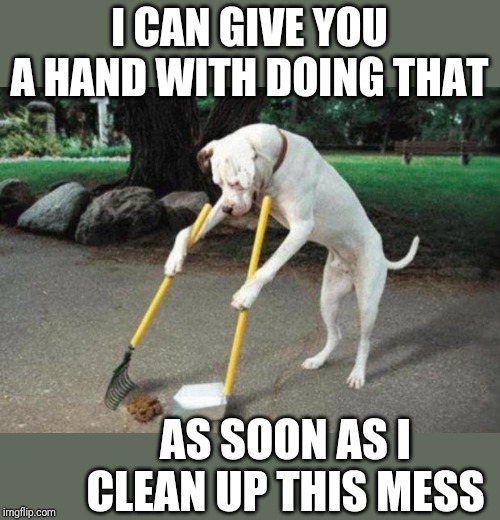 Dog poop | I CAN GIVE YOU A HAND WITH DOING THAT AS SOON AS I CLEAN UP THIS MESS | image tagged in dog poop | made w/ Imgflip meme maker