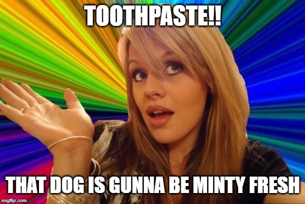 Dumb Blonde Meme | TOOTHPASTE!! THAT DOG IS GUNNA BE MINTY FRESH | image tagged in memes,dumb blonde | made w/ Imgflip meme maker