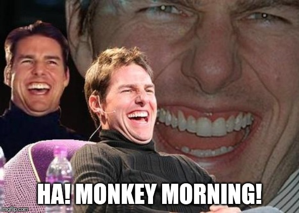 Tom Cruise laugh | HA! MONKEY MORNING! | image tagged in tom cruise laugh | made w/ Imgflip meme maker