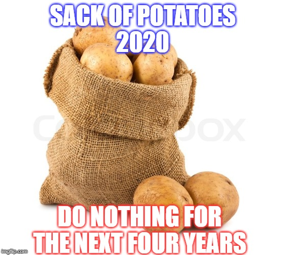Sack of Potatoes 2020 | SACK OF POTATOES 2020 DO NOTHING FOR THE NEXT FOUR YEARS | image tagged in sack of potatoes,election 2020,2020 elections | made w/ Imgflip meme maker
