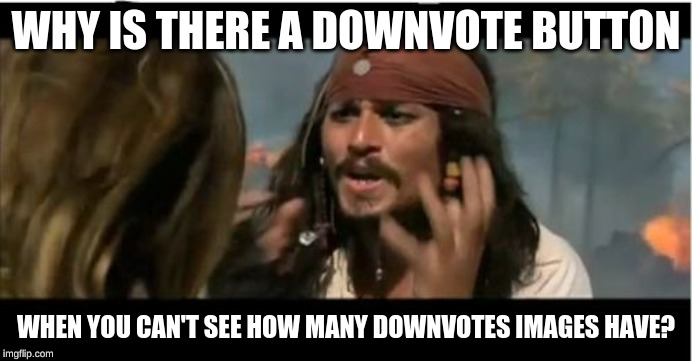 I remember when the downvote button actually did something. | WHY IS THERE A DOWNVOTE BUTTON WHEN YOU CAN'T SEE HOW MANY DOWNVOTES IMAGES HAVE? | image tagged in memes,why is the rum gone,dank memes,downvote | made w/ Imgflip meme maker