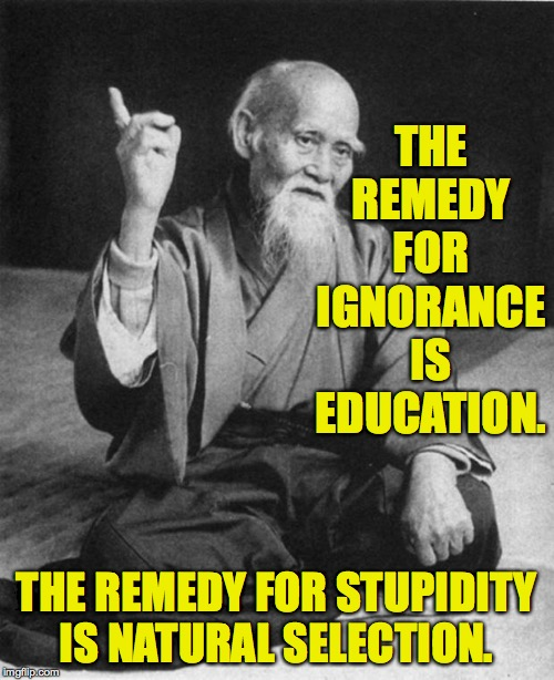 Unfortunately, natural selection can take a while. | THE REMEDY FOR IGNORANCE IS EDUCATION. THE REMEDY FOR STUPIDITY IS NATURAL SELECTION. | image tagged in wise master,memes,ignorance,stupidity,education,natural selection | made w/ Imgflip meme maker