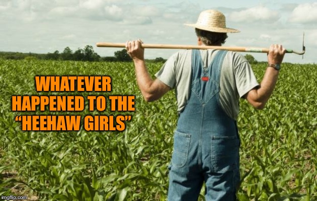 "farmer | WHATEVER HAPPENED TO THE ""HEEHAW GIRLS"" 